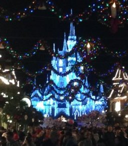 Disney World Holiday Lights